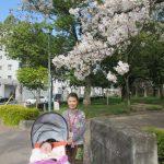 桜の木の下での写真