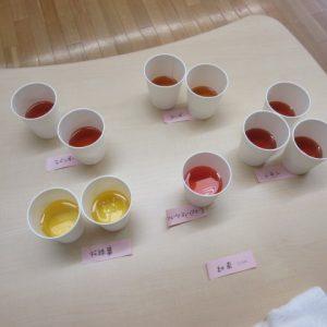 いろいろな種類のお茶の写真