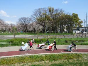 公園の中を4組の利用者さんとスタッフが並んでお散歩している様子
