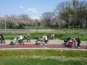公園の小道を6組の利用者さんと職員が並んでお散歩している様子