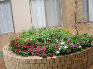 丸い花壇に赤、ピンク、白、黄色の大小の草花がたくさん咲いている様子