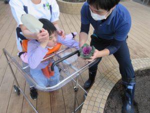 別の利用者さんがスタッフと一緒にお花の苗を植える様子