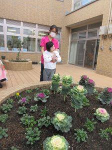 手前の花壇には白、紫、薄いピンクの葉ボタンが花壇に植えられていて一人の利用者さんを後ろから抱き留めているスタッフが写っている様子