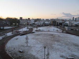 ウェルネスガーデンが白く雪で白く染まっている様子