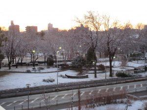 道路をはさんだ志賀公園も白く染まっている様子