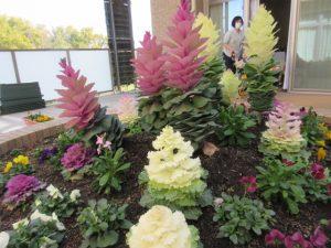 色とりどりのお花が花壇にたくさん咲いている様子