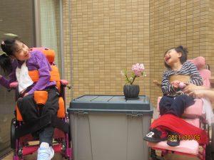 2人の女の子の利用者さんが盆栽の桜と一緒に楽しそうに笑う様子