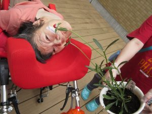 白い鉢に植えられた千日紅の苗と隣に女性の利用者さんが車椅子に横たわっている様子