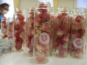 たくさんの瓶の中に千日紅の花がたくさん入っている様子