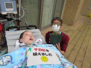 呼吸器をつけた男性利用者さんと横で千日紅の苗が植わった植木鉢を持つ男性スタッフの様子